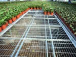 台湾温室苗床网片